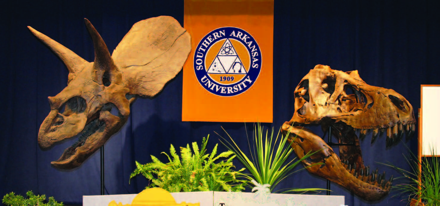 SAU exhibit features donated dinosaur skeletal casts