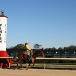 Mulerider trying her speed at Oaklawn